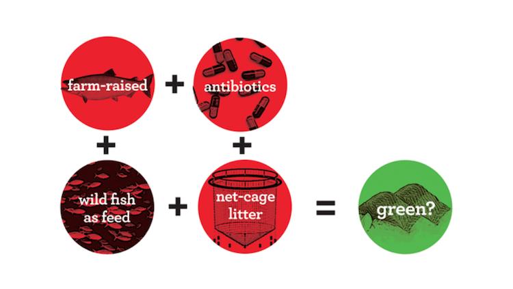 farmed fish not green