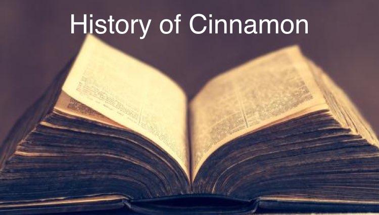 cinnamon history